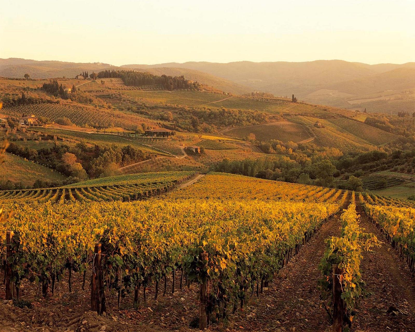 Colinas Toscanas