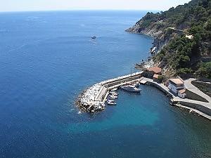 Ilha de Gorgona