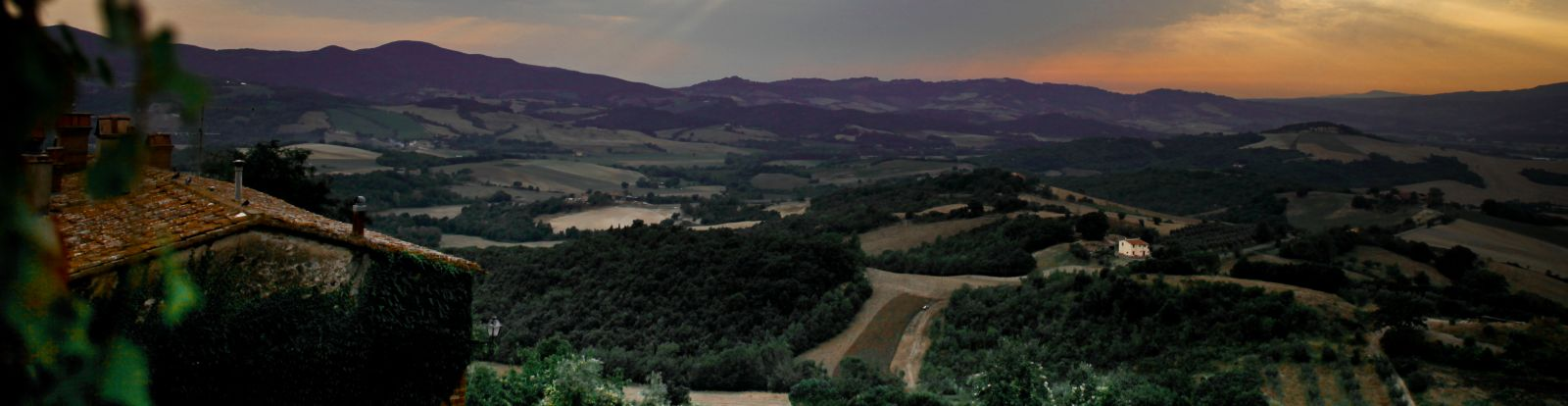 Panorama da Vinícola