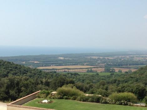 visão no alto de uma vinícola de Bolgheri
