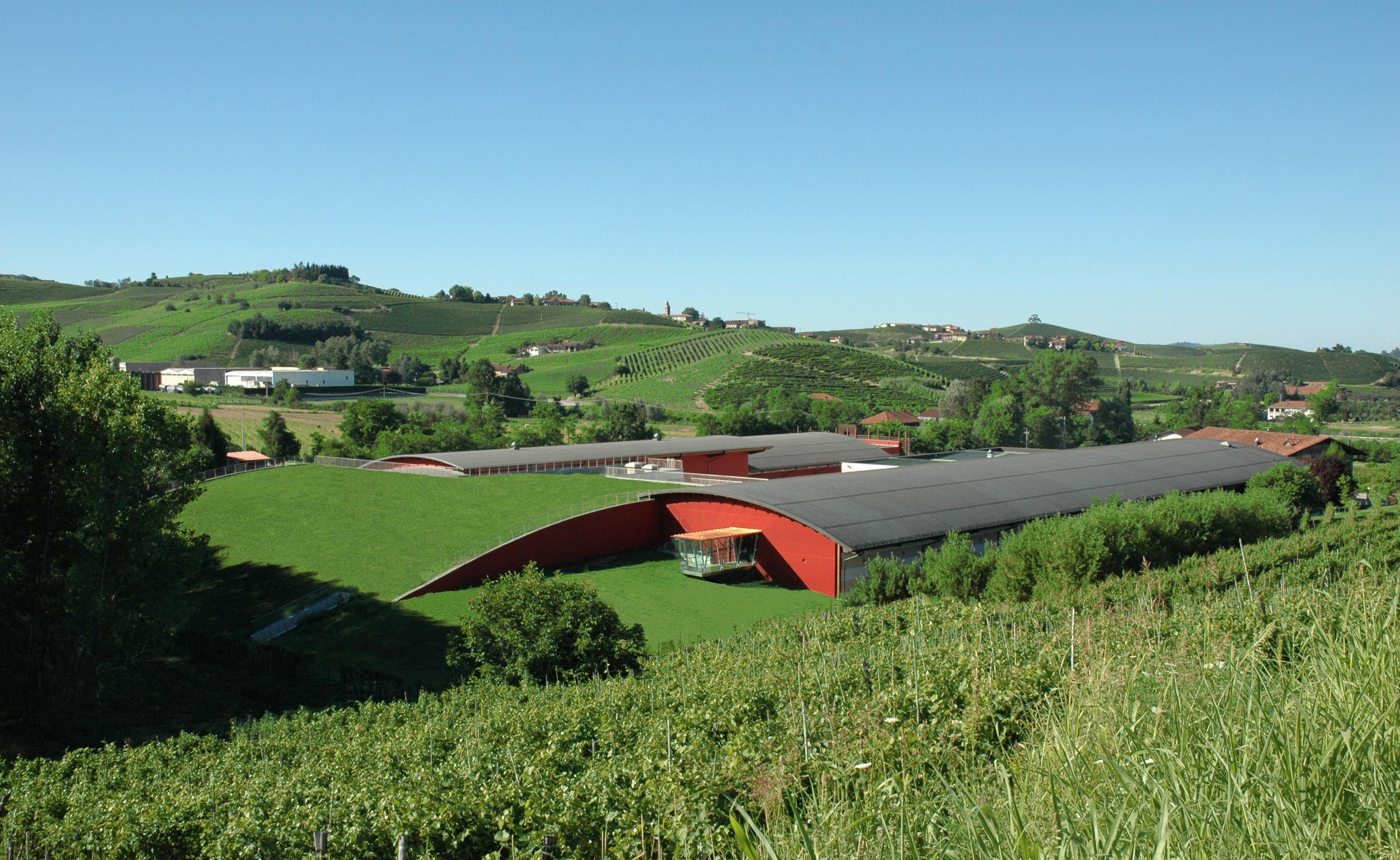 vinícola Terre da Vino  em Barolo